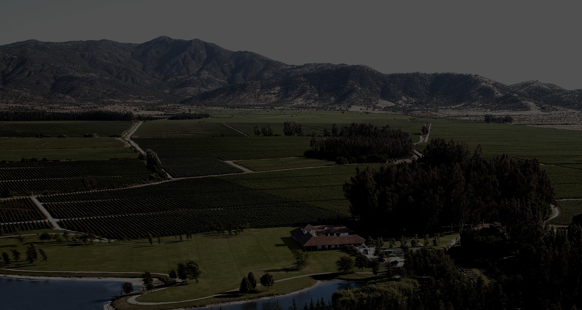 Les Domaines Los Vascos