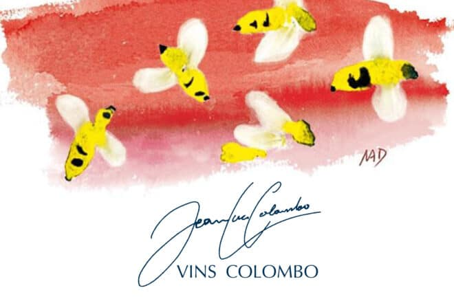 offre SUMMER de la maison COLOMBO